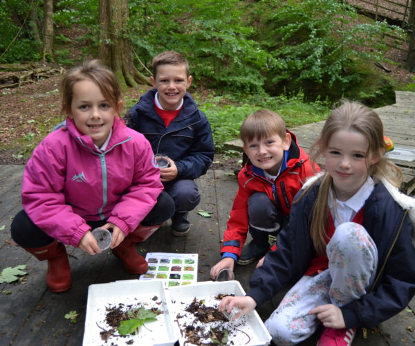 outdoor education bug hunting session Lancashire